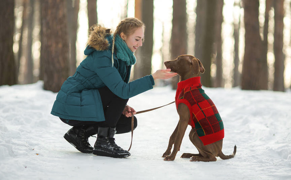 dog cold weather jackets