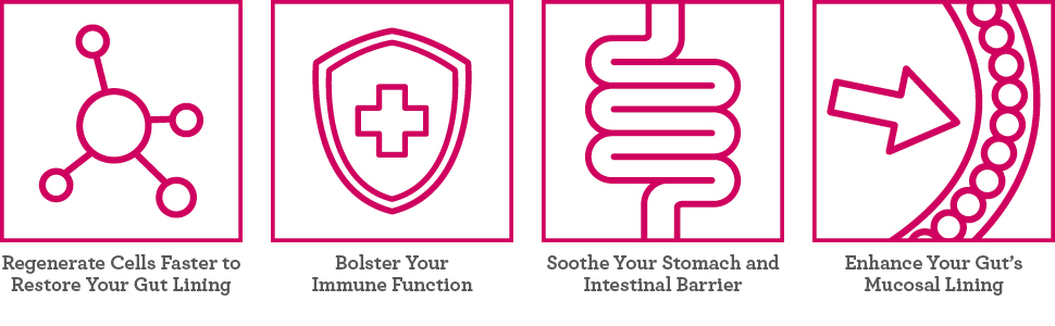 regenerate cells faster to restore your gut lining, bolster immune function, soother stomach