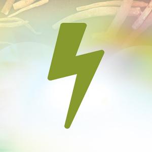 shoden ashwagandha for energy