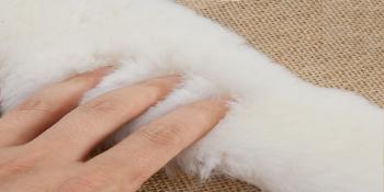 Fleece Insoles