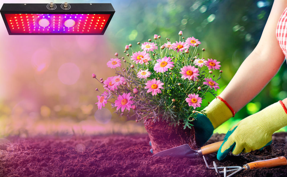 LED grow lights for indoor plants, led grow lights, plant grow lights indoor grow light bulbs