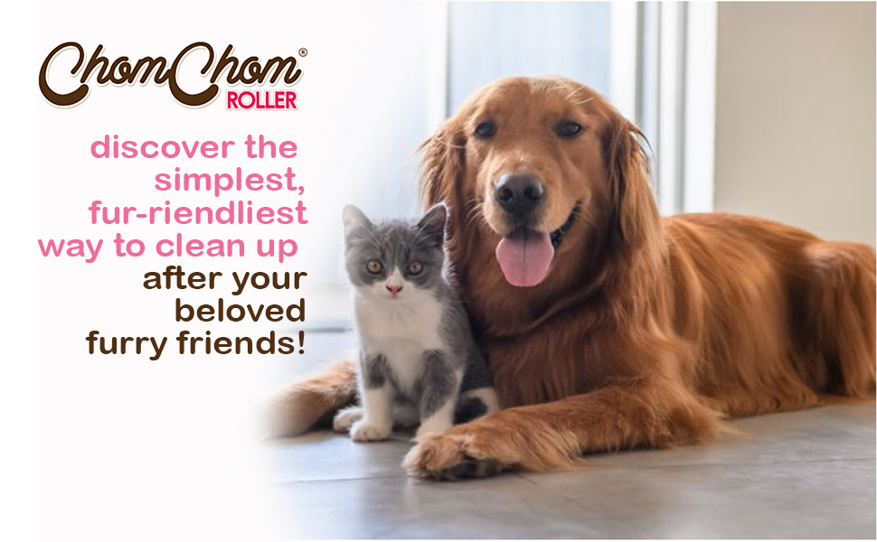cat and dog hair remover