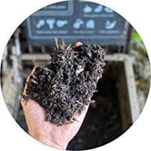 Harvest your compost