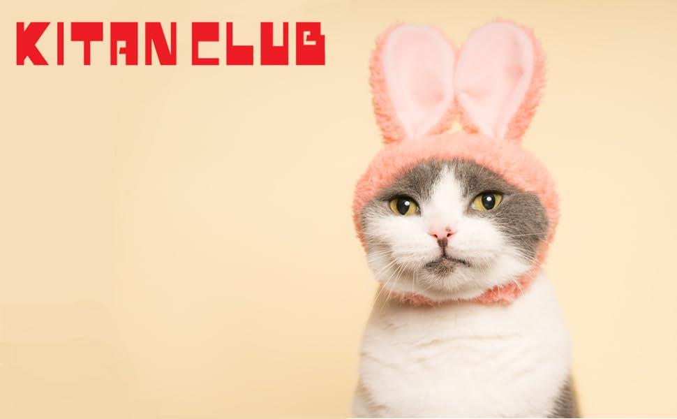 Cat Cap Rabbit cute hat for cat