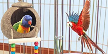 parakeet toys for cage