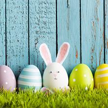 Easter Egg Decorating Dye Kit