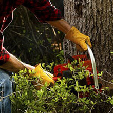 wood cutting work gloves