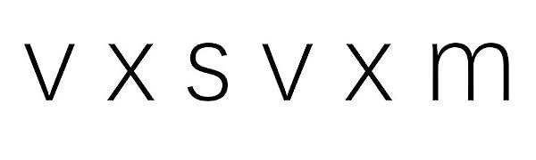 vxsvxm logo