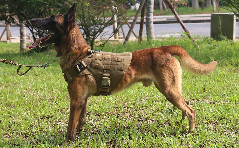 army dog harness vest