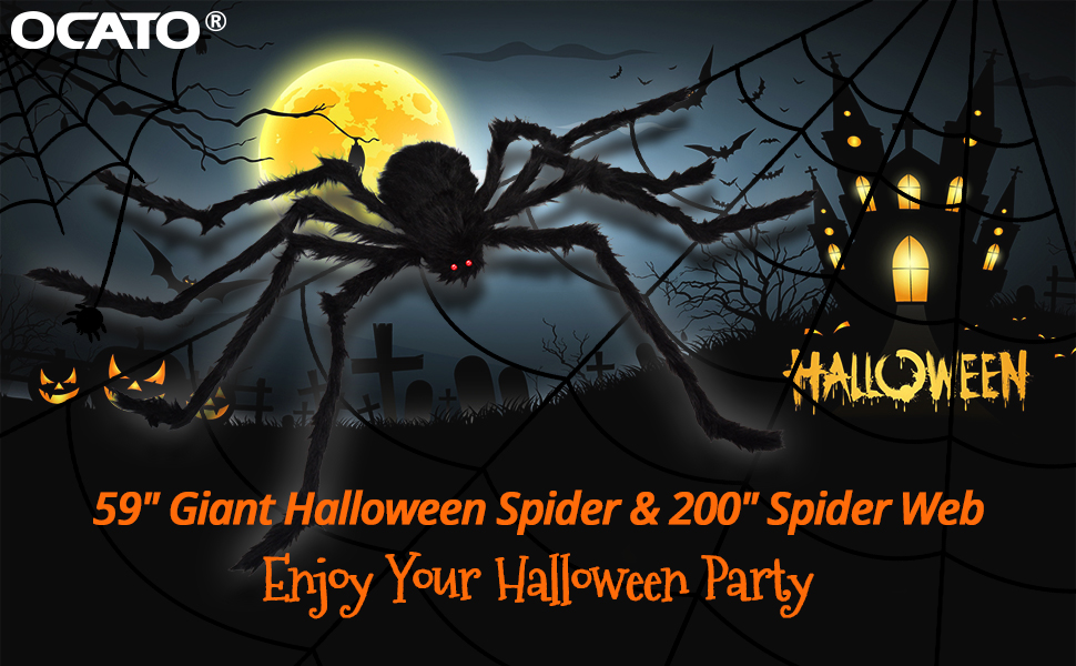 spider web giant spider