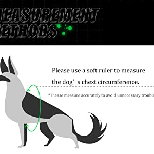 please use a soft ruler to measure the dog' s chest circumference