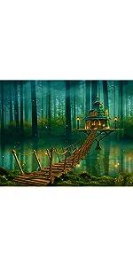 avec Cadre pour la D/écoration Int/érieure Maison 40x50cm Bougimal Peinture par Num/éro Adulte avec Pinceaux et Acryliques Bricolage Peintures Kits pour Adultes Enfants Seniors D/ébutant