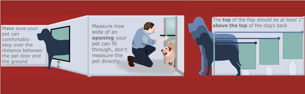 How to Measure Your Pet