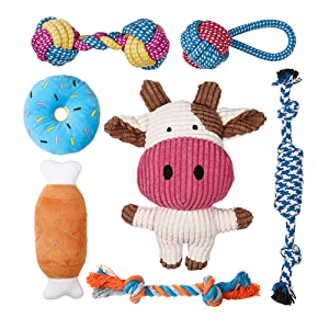 small dog toys