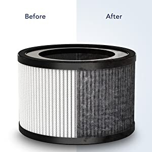 Filter before and after image showing the dust and allergens