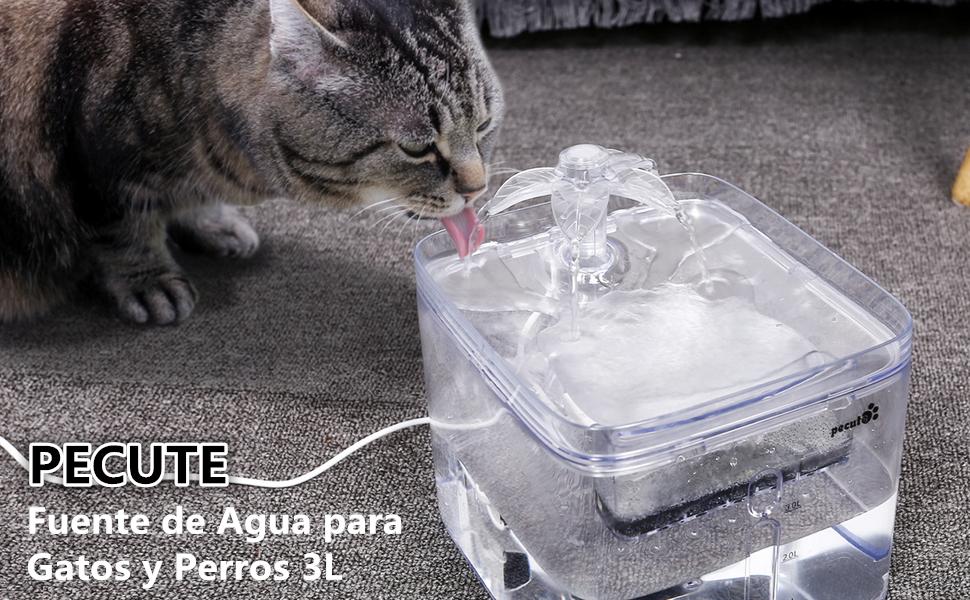 Pecute Fuente de Agua para Gatos y Perros 3L Transparente Automático Dispensador Bebederos Gatos, 3 Modos de Agua, 40dB súper silencioso, Pack de 2 Filtros de Carbón: Amazon.es: Productos para mascotas