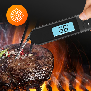 meat thermometer for grilling