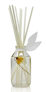 LOVSPA Apothecary Glass Reed Diffuser Bottle with sticks for the Home or Office, 4 fluid ounces
