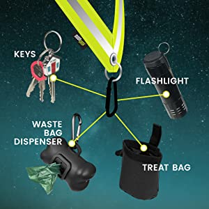 pets dogs walking night reflective gear flashlight easy access convenient accessible custom clip-on
