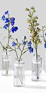 Clear Pleated Bud Vase, Set of 4 Home Decor Events Parties Wedding Spa Kitchen