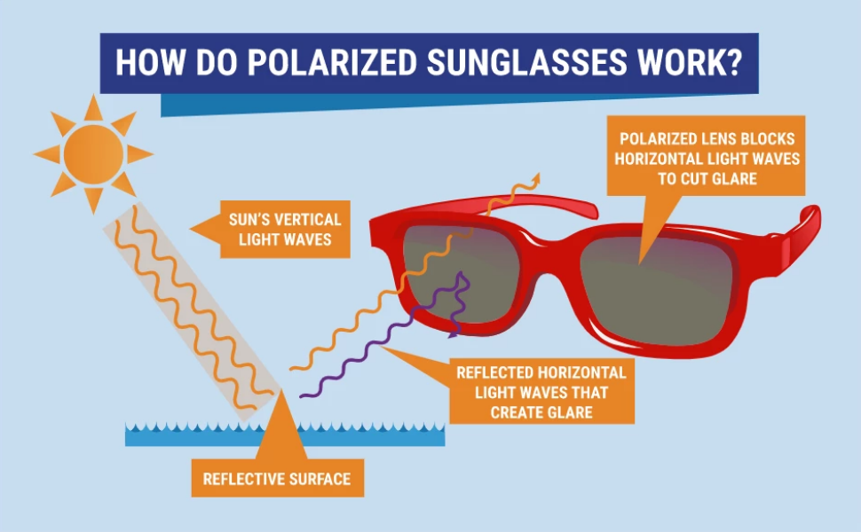 How Do Polarized Sunglasses Work?