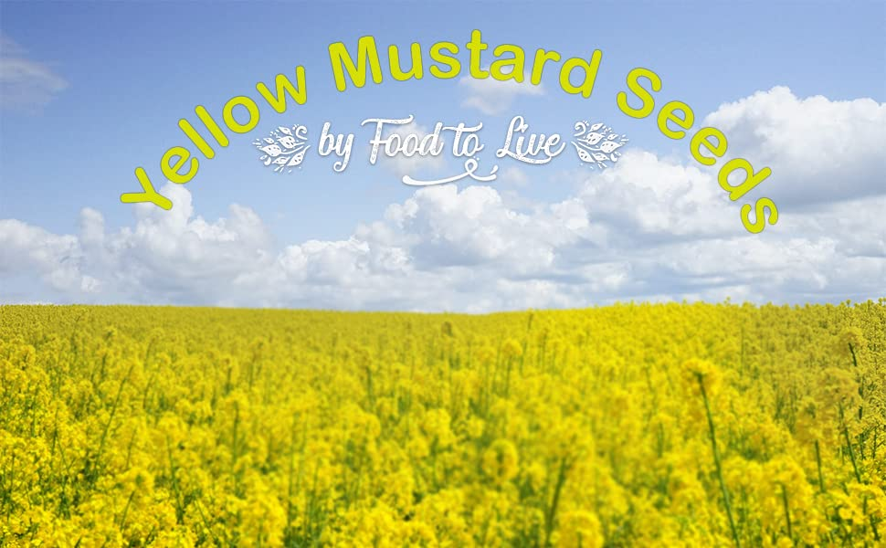 Food to Live Yellow Mustard Seeds (Kosher) — 5 Pounds