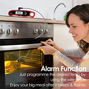 meat thermometer for grill