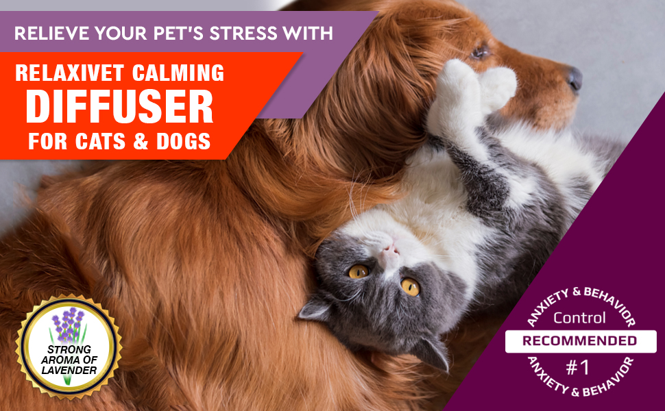 calming pheromone diffuser for cats dogs natural anti anxiety