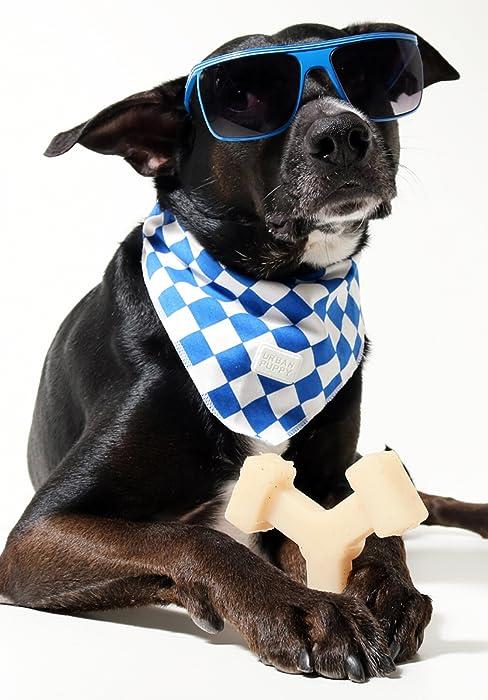 Bullibone Spinabone spinning dog toy nylon chew