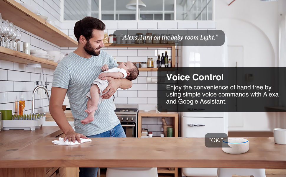 gosund voice control