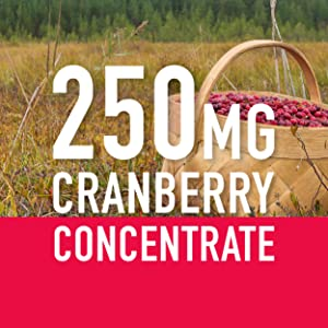 Sports Research Cranberry Concentrate