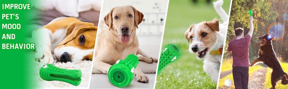 improve pets mood and behavior