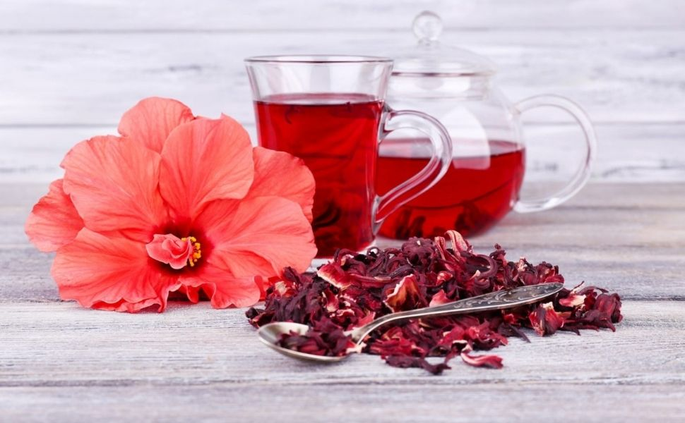 Hibiscus Red Flower Oil