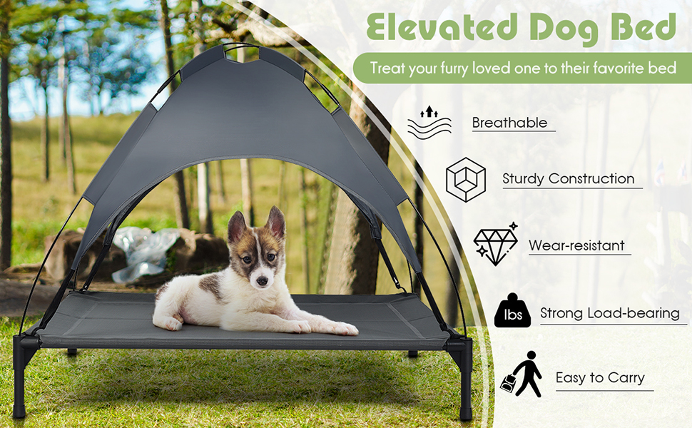 Elevated Dog Bed with Removable Canopy