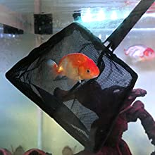 fish tank cleaning tool