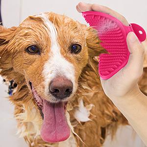 Massage Bath Brush