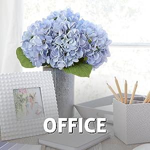flowers, decoration, hydrangea, office