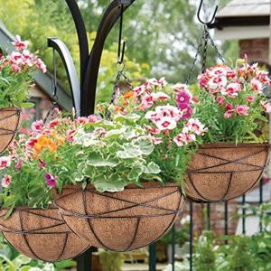 Hanging Basket Outdoor/Indoor