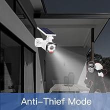 anti-thief