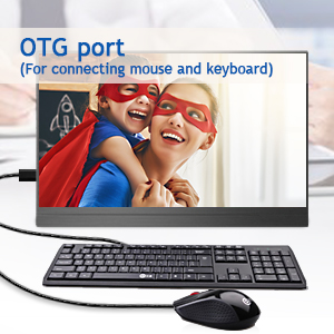 portable monitor with OTG