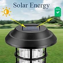 solar path lights