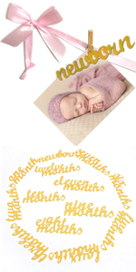 12 Month Photo Banner