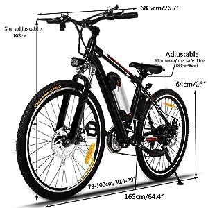 Adult Electric Bikes