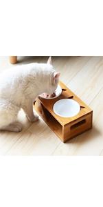 raised cat bowl