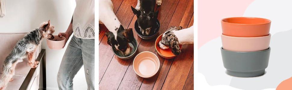Ceramic Gloss Dog Bowls