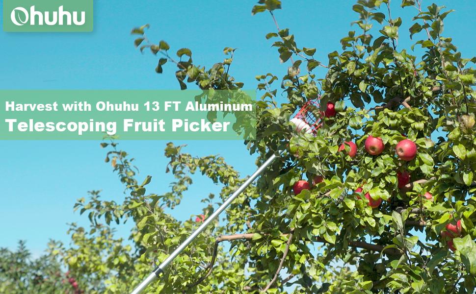 ohuhu 13 ft telescopic fruit picker
