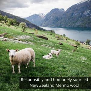 sustainable, ethical, cruelty free, sheeps wool, new zealand wool