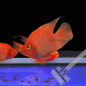 Fish Tank Gravel Cleaner