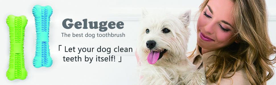 Dog Toothbrush Stick