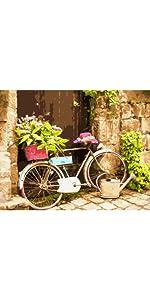 MaileKai Creates Flower Bike Framed Paint by Number Kit